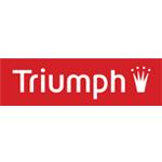 Triumph_klein